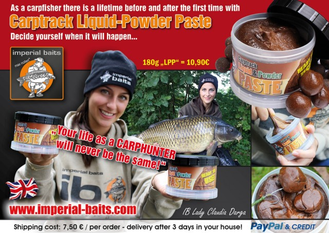 carpworld november 1200