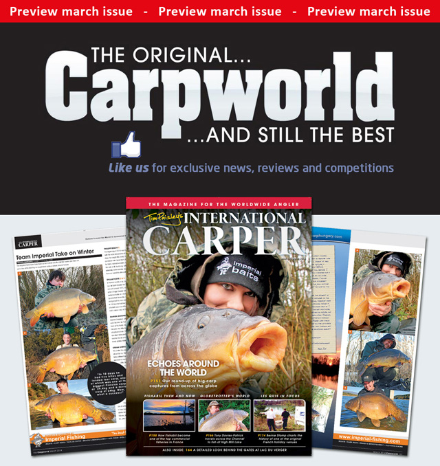 Carpworld Cover 640