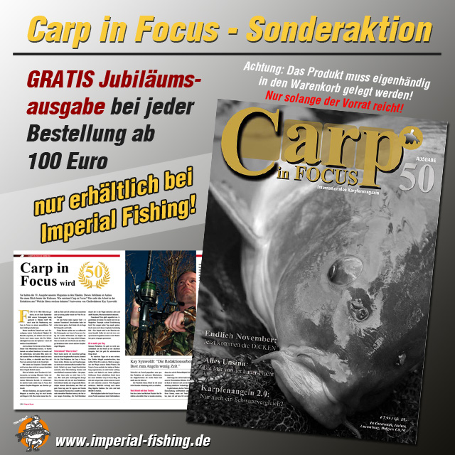 carp in focus aktion 640