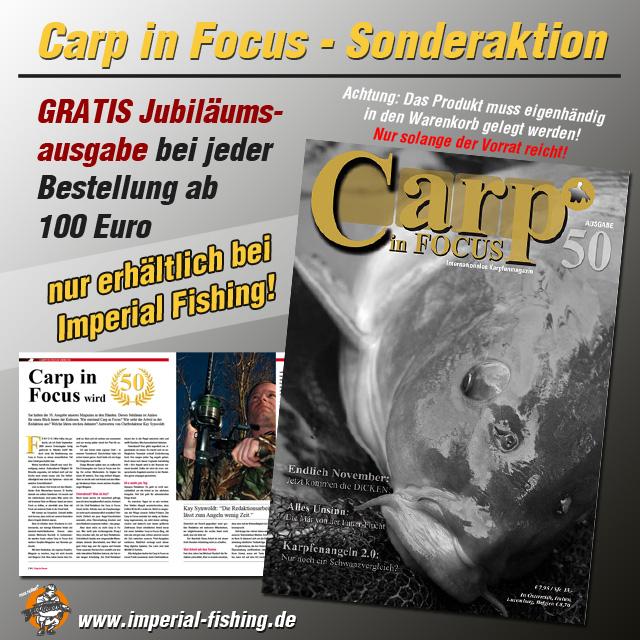 carp in focus aktion 640