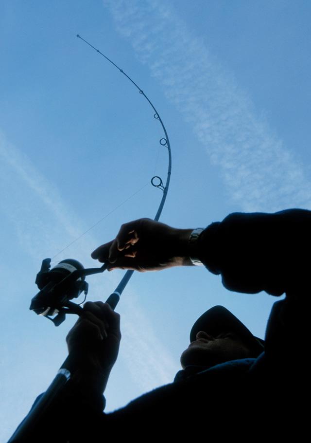 Die Rollengröße richtet sich nach dem Gewässer und Fangmethode - nicht nach der größe der Karpfen da nur Drücke von 1-2,5 kg herrschen_1