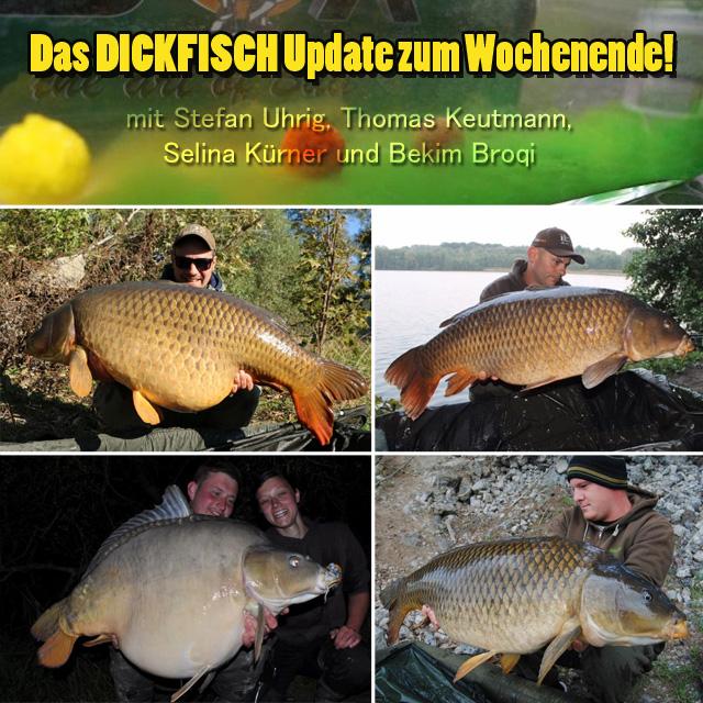 dickfischupdate640