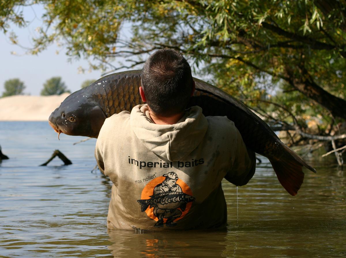 Le fil coloré pour la pêche acheter