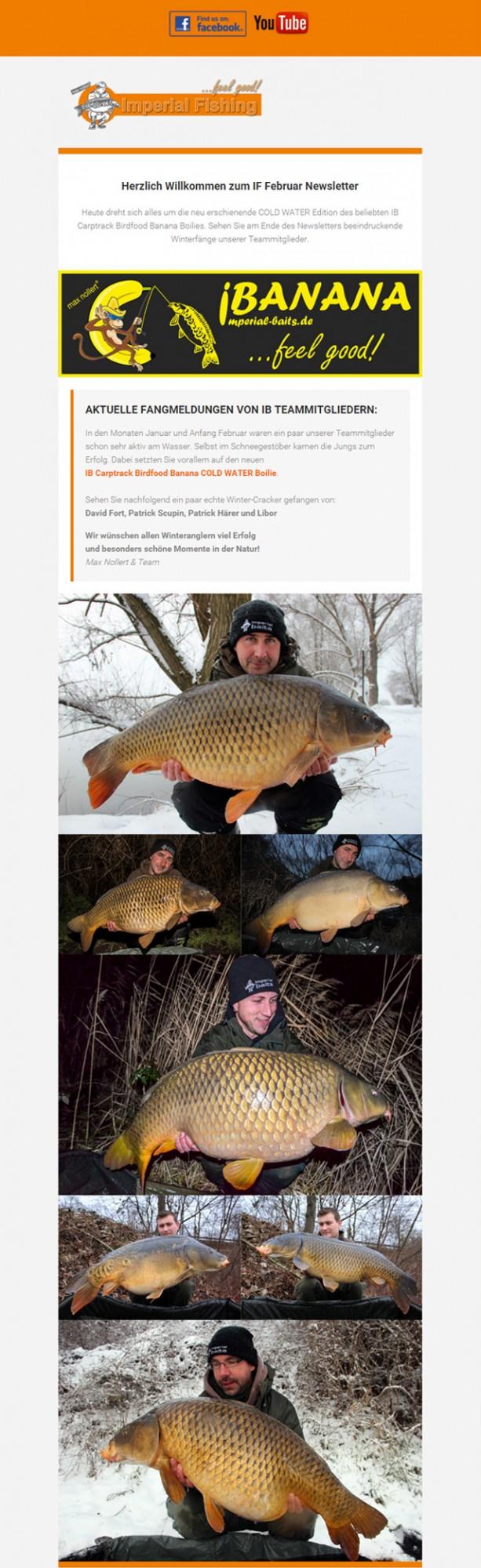 newsletter februar 2016