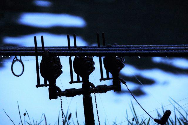 Bild 8. Noch war es nur durch den Regen feucht...