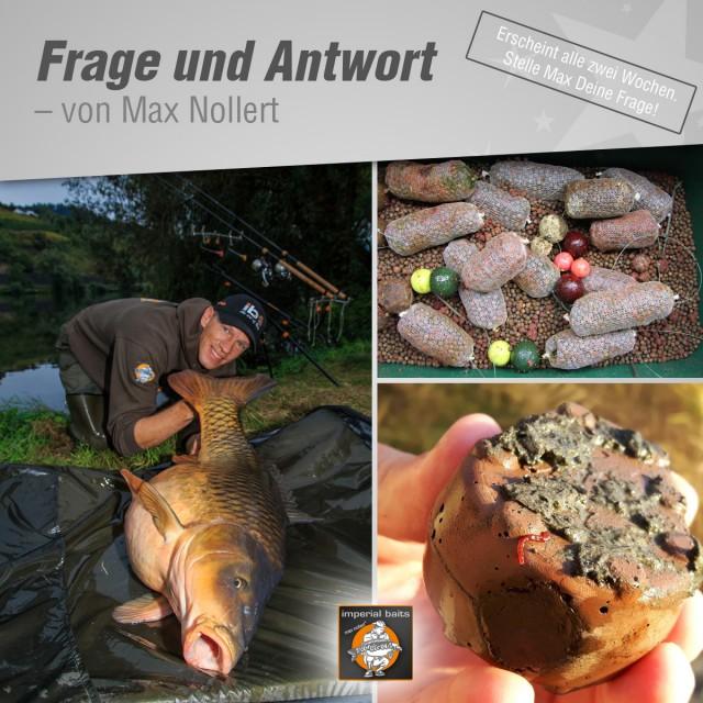 Frage und Antwort Max Nollert 05