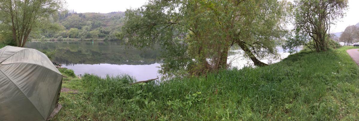 Panorama Mosel Angeln