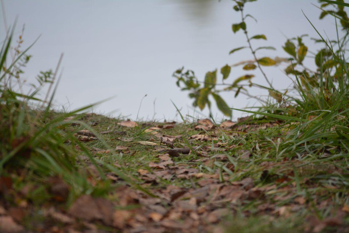 Steven Kuznia, Der Herbst ist da!