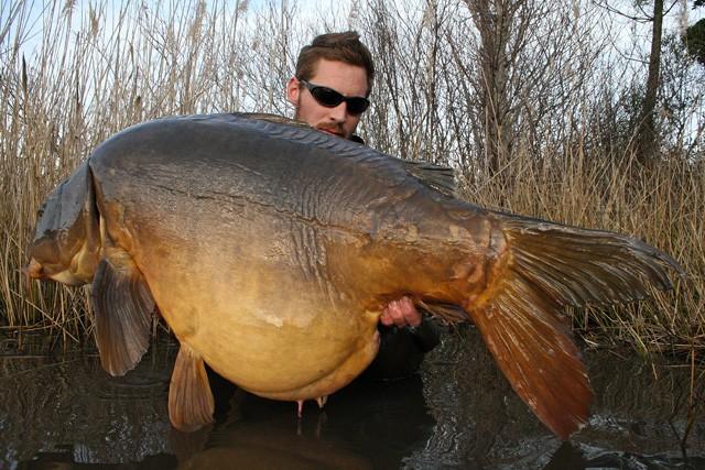 25 kg IB Carptrack BIG Fish Boilies - das Big-Boilie-Bulk-Bag