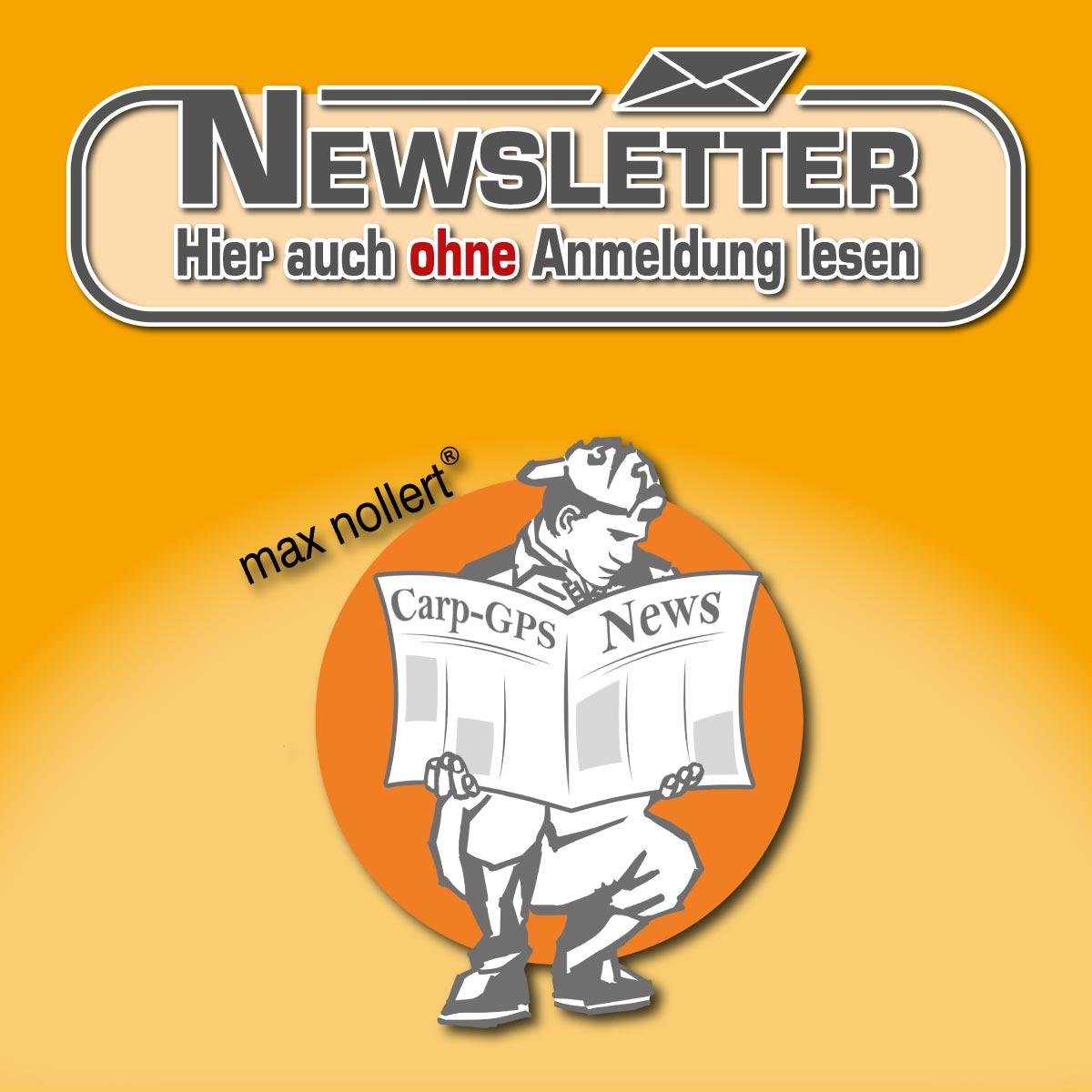 ib_newsletter_ohne_anmeldung
