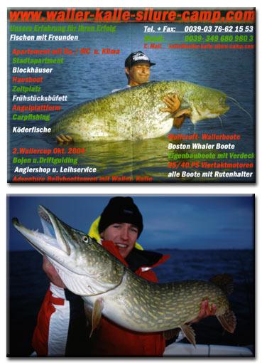 """;fbild22004-01-24-15-31-18.jpg<br />neue free Videos;Im Free-Video-Downloadbereich gibt es jetzt Video Nr. 11 und Nr. 12:<br />Jan Gutjahr hat einen sehr gelungenen Trailer zu seiner im Winter erscheinenden DVD """"Spinnfischen auf Hecht"""" bereit gestellt.<br />Waller Kalle traf ich auf der Boot 2004.<br />Kurzer Hand entstand ein Interview ¸ber sein Welscamp am italienischem Po.<br />Hier geht`s zum <u>Free-Video-Downloadbereich</u></p> </div> <div class="""